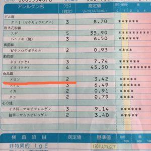 血液検査結果メロン